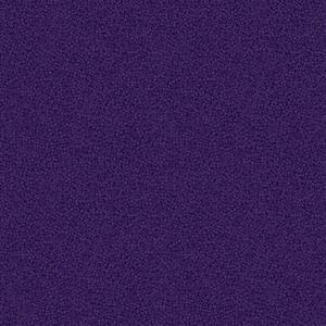 Brighton Dark Purple NEW!!!. Product thumbnail image