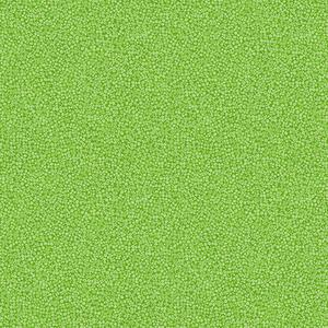 Brighton Apple Green. Product thumbnail image