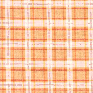 Abby Rose Orange Check. Product thumbnail image